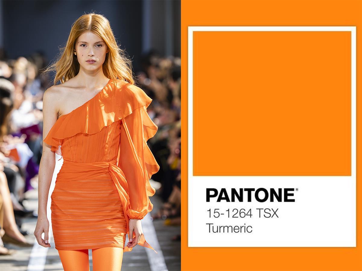 Color turmeric pantone 2019