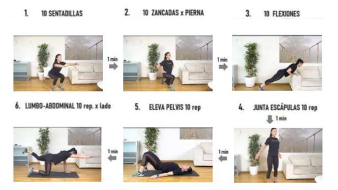 Tabla de ejercicios Pronokal el plan de ejercicios perfecto - tabla de ejercicios pronokal 9e9623b5 665x374